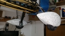 Bellanca Xtreme Decathlon - Wheel Pants_18